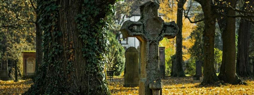кладбище, лес